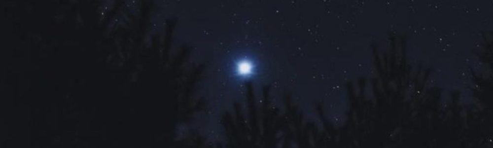 Il dono della stella