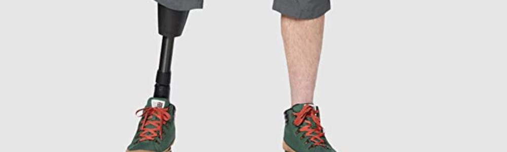 La gamba del modello