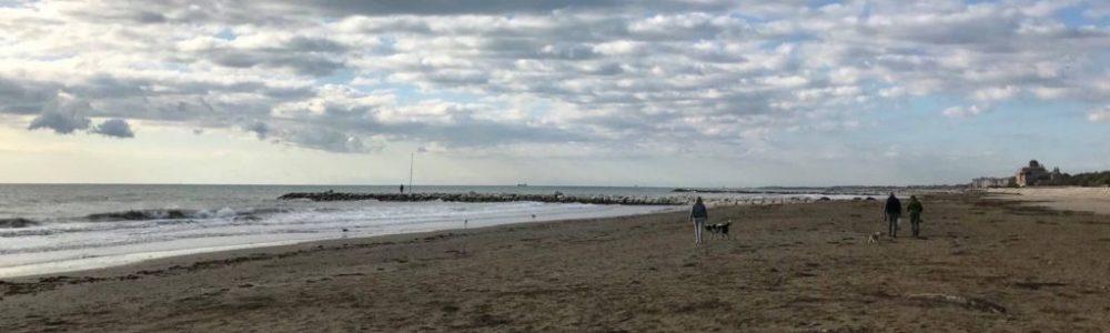 Passeggiare in riva al mare